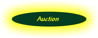 Thirsty's Auction button